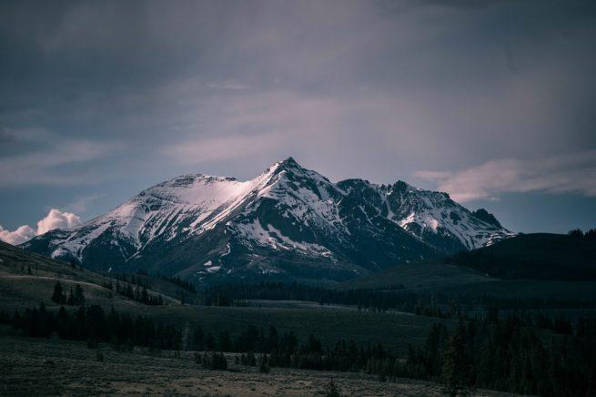 ColoradoLocalPage